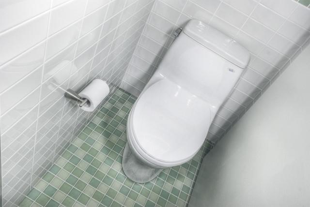 Society Hill Bathrooms modern-bathroom