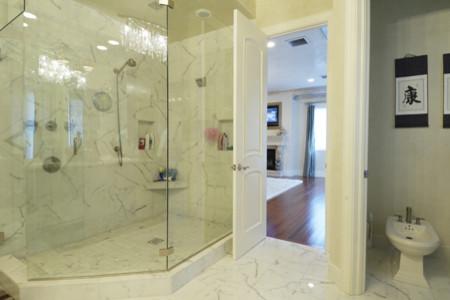 South Tampa modern-bathroom