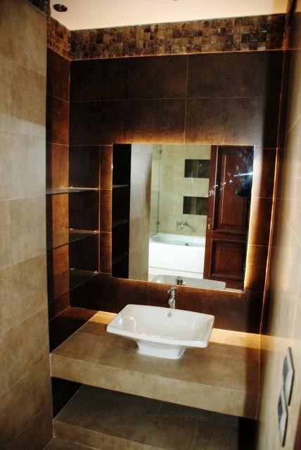 Swan Lake contemporary-bathroom