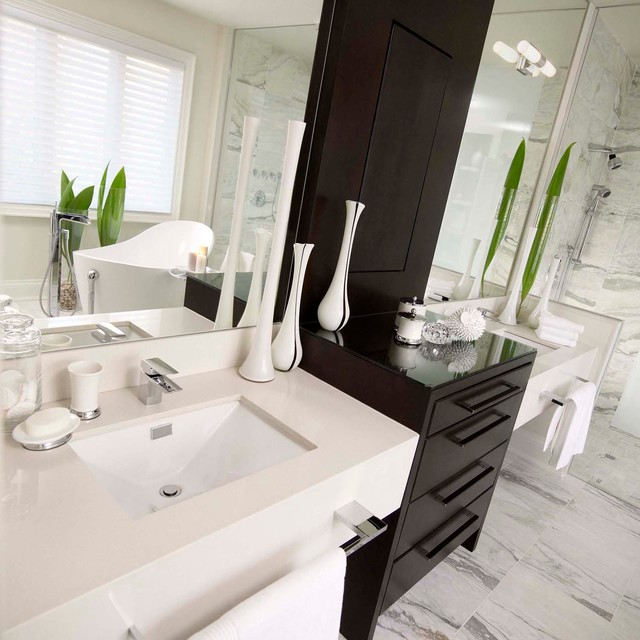 Tailored glamour contemporary bathroom toronto by for Bathroom decor regina
