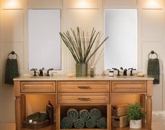 Take Home a Tropical Retreat traditional-bathroom