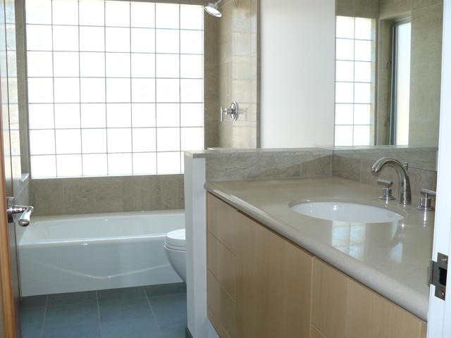 The Glass Bridge House contemporary-bathroom