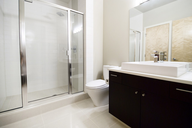 The Urban Executives contemporary bathroom