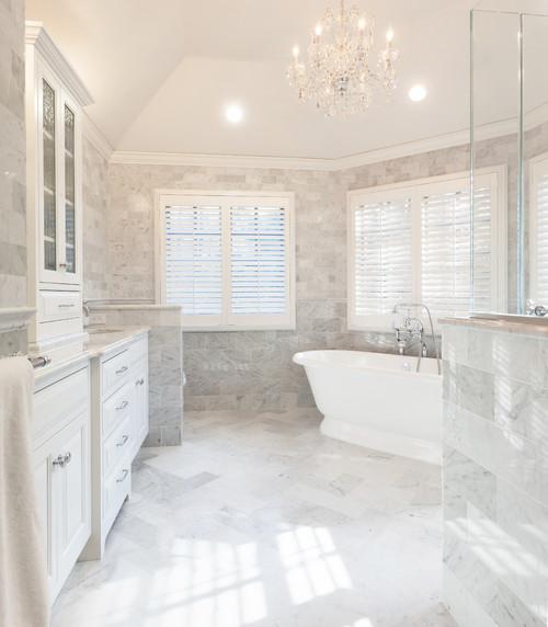 Luxury Master Bathroom Renovation in Fox Valley IL