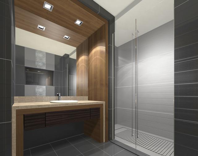 toilet contemporary-bathroom