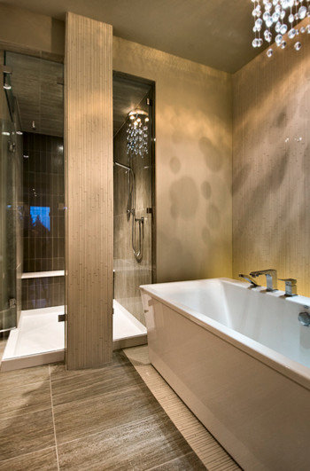 Tracey Lamoureux eclectic-bathroom