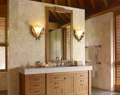 International Style tropical bathroom