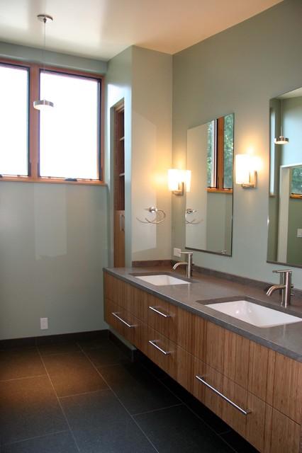 Walsh Hollon Residence contemporary-bathroom