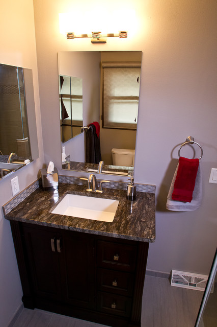 Whole House Remodel in Cottage Grove, Wisconsin transitional-bathroom