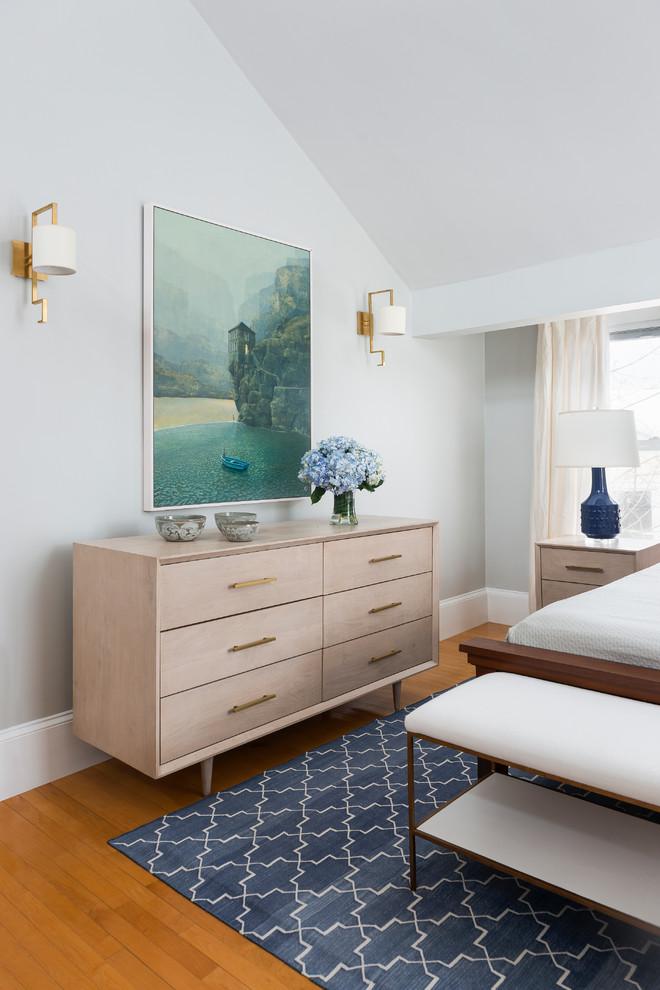 Bedroom - transitional bedroom idea in Boston