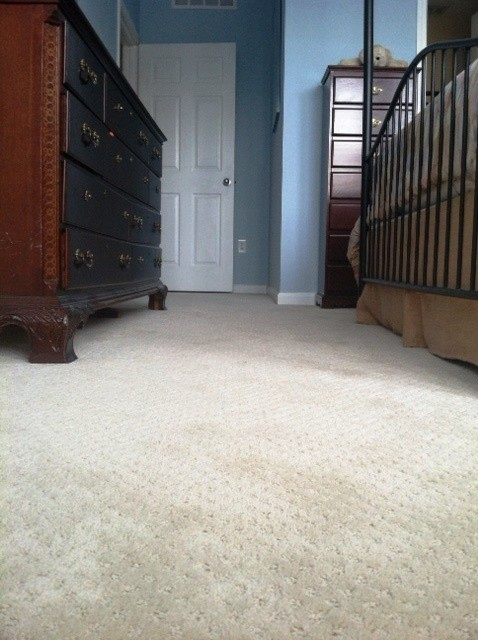 Traditional Bedroom Carpet : Bedroom carpet traditional atlanta by