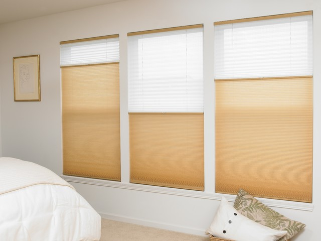 Blinds Com Cordless Top Down Bottom Up Cellular Shades