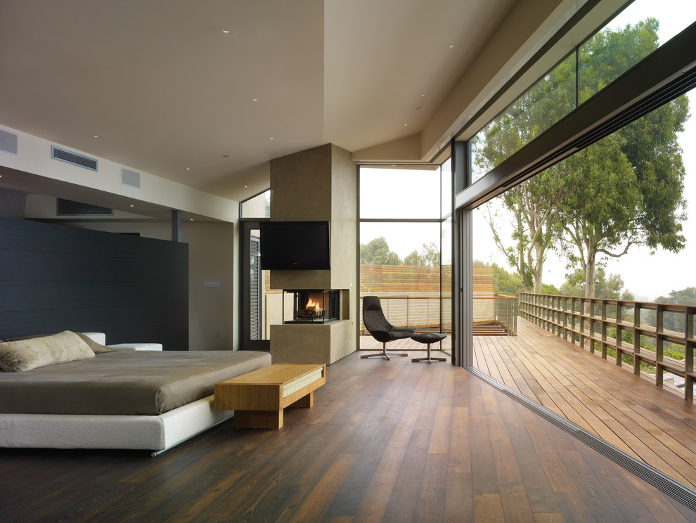 Mid-sized trendy master dark wood floor bedroom photo in Los Angeles with a two-sided fireplace, white walls and a plaster fireplace