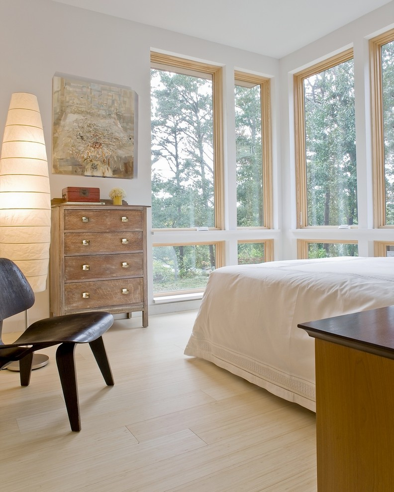 Inspiration for a modern bamboo floor bedroom remodel in Boston