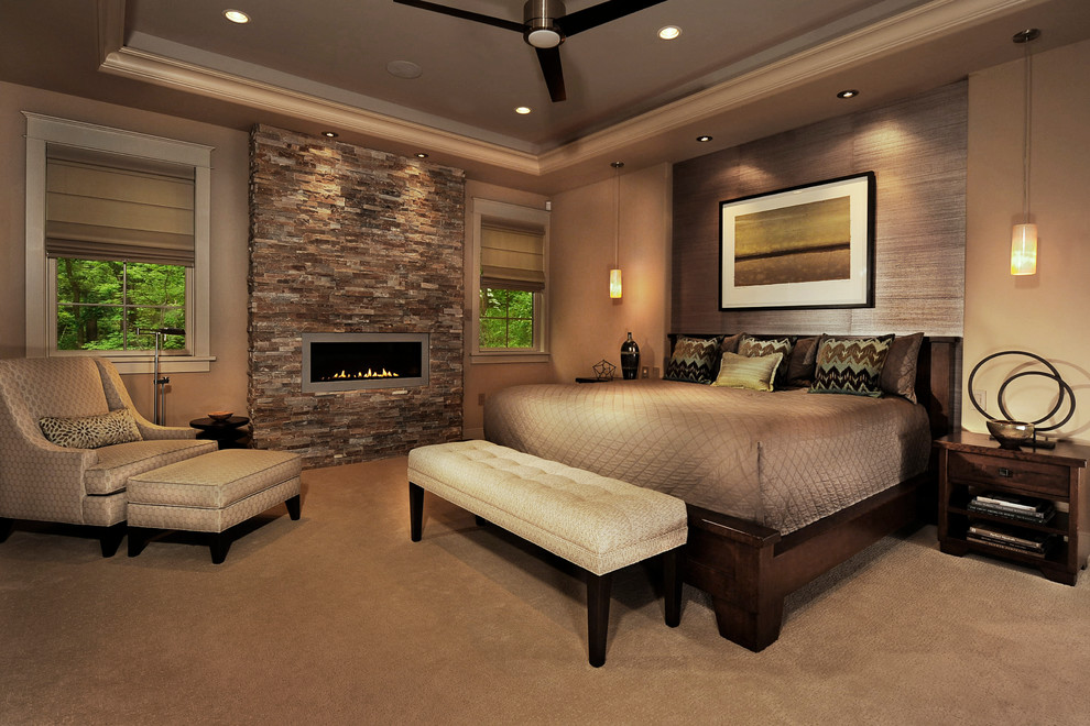Trendy carpeted bedroom photo in Philadelphia with a ribbon fireplace