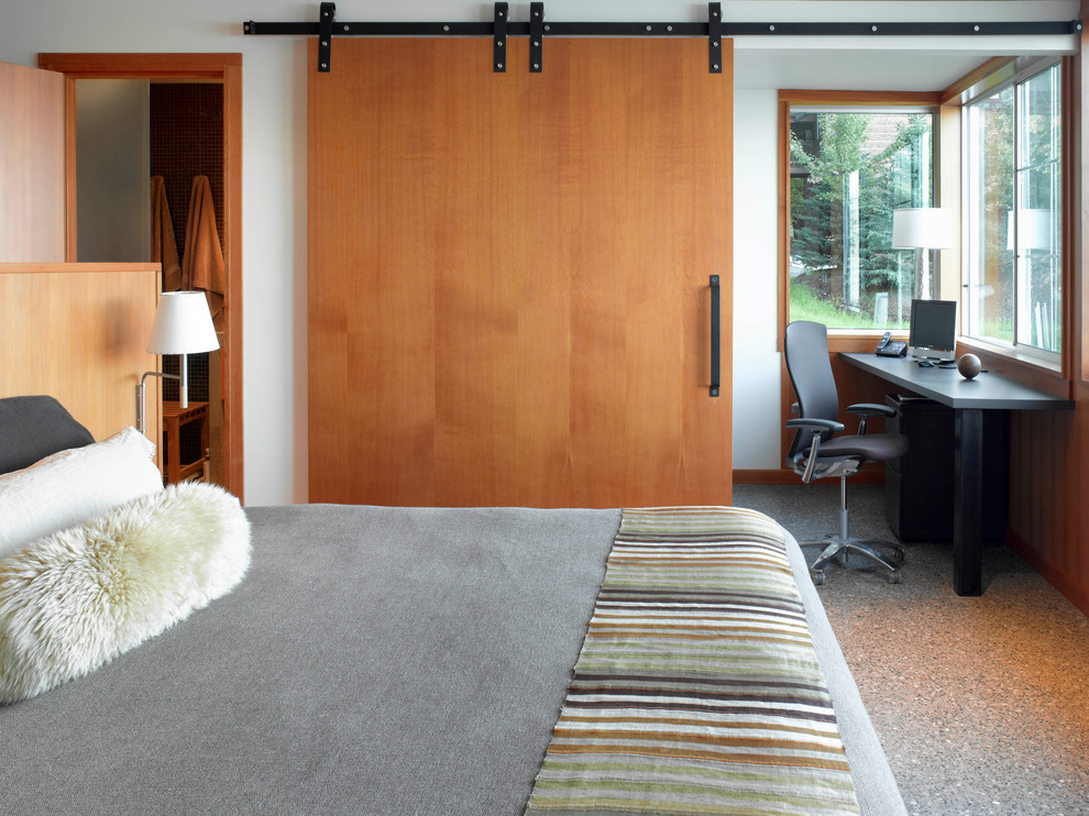 Bedroom - large modern master bedroom idea in San Francisco with white walls and no fireplace