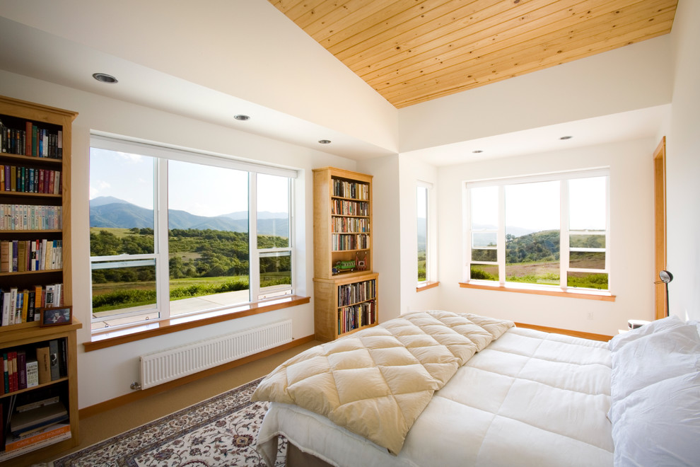 Example of a large trendy master bedroom design in Other with white walls and no fireplace
