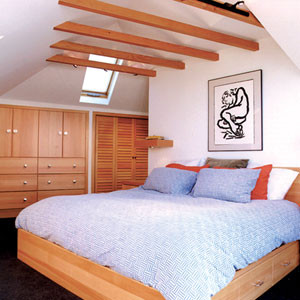 Master Suite Dormer Addition contemporary-bedroom