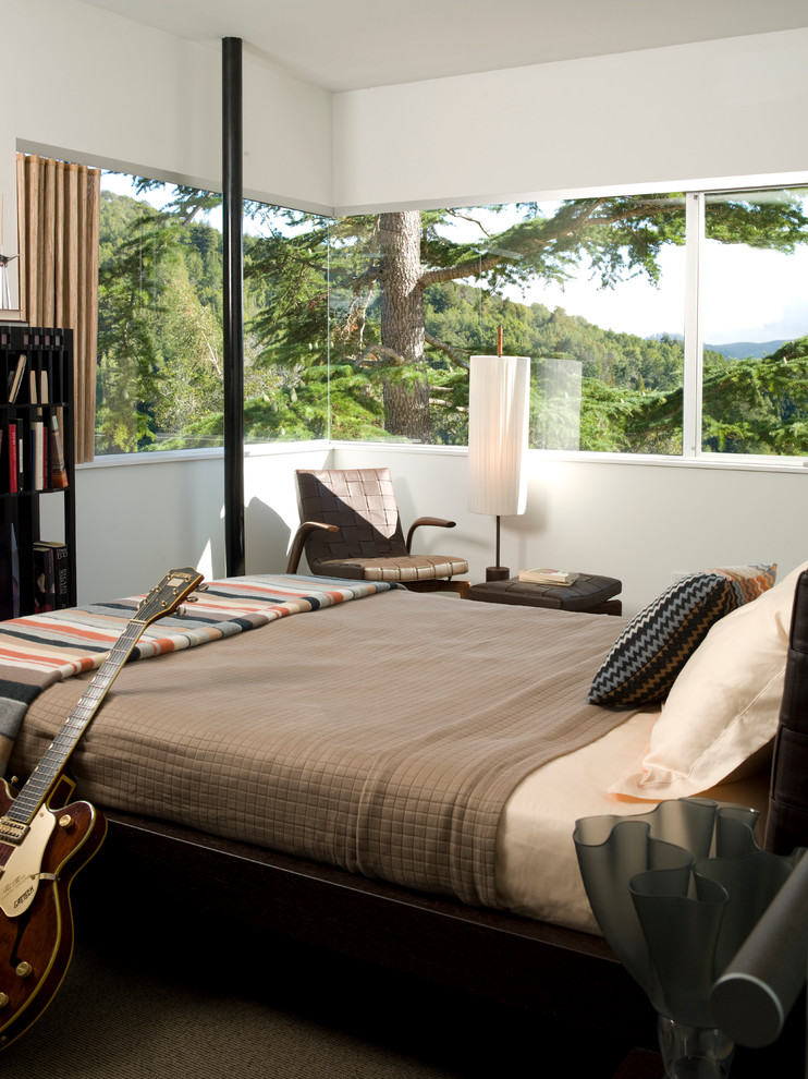 Inspiration for a modern master bedroom remodel in San Francisco with white walls