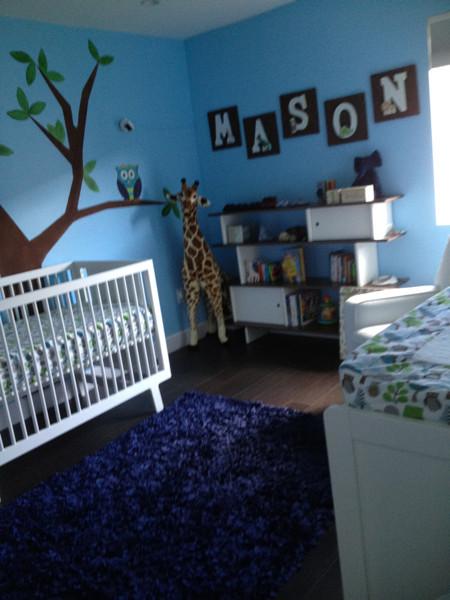 Modern Boy Nursery Owl On A Wishing Tree Bedroom