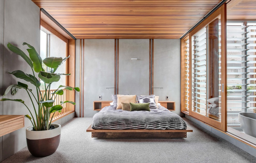 This is an example of a contemporary master bedroom in Sydney with carpet and grey floor.