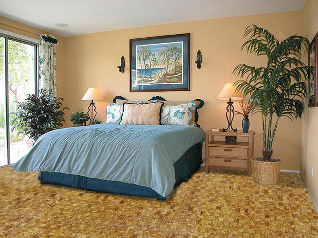 Nova Cork Flooring Traditional Bedroom Chicago By