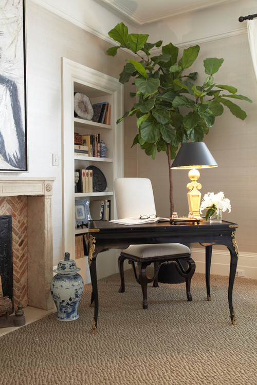 See why the fiddle leaf fig tree is the hottest trend that works in any space