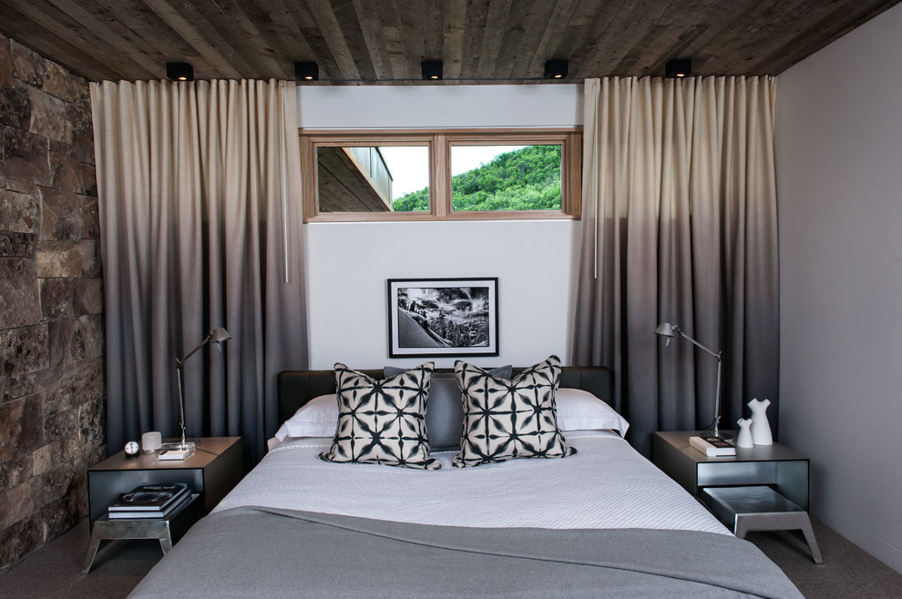 Bedroom - contemporary guest carpeted bedroom idea in Salt Lake City with white walls and no fireplace