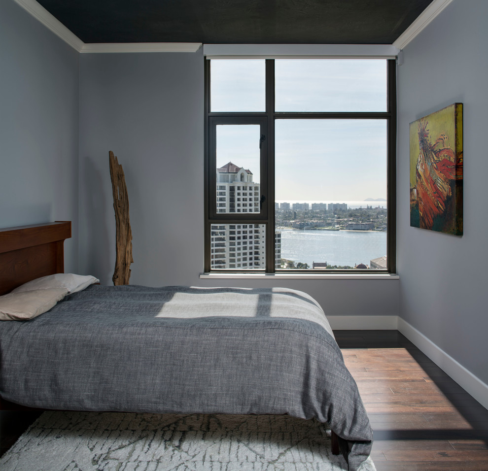 Inspiration for a small modern master dark wood floor bedroom remodel in San Francisco with gray walls and no fireplace