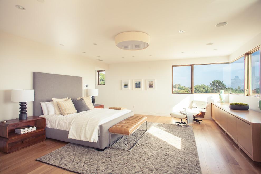 Bedroom - large contemporary master medium tone wood floor bedroom idea in Los Angeles with white walls