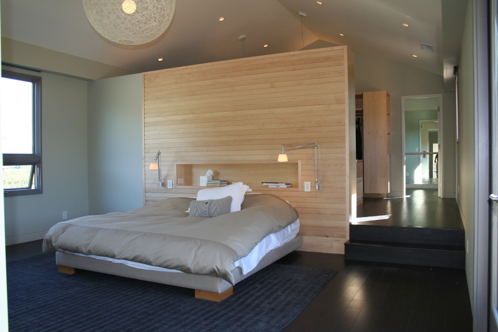 Bedroom - mid-sized contemporary master dark wood floor bedroom idea in San Francisco with gray walls and no fireplace