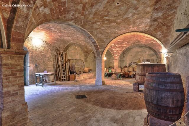 Andar per vino e cantine in toscana in campagna cantina