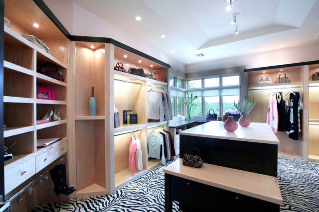 Design Home contemporary closet