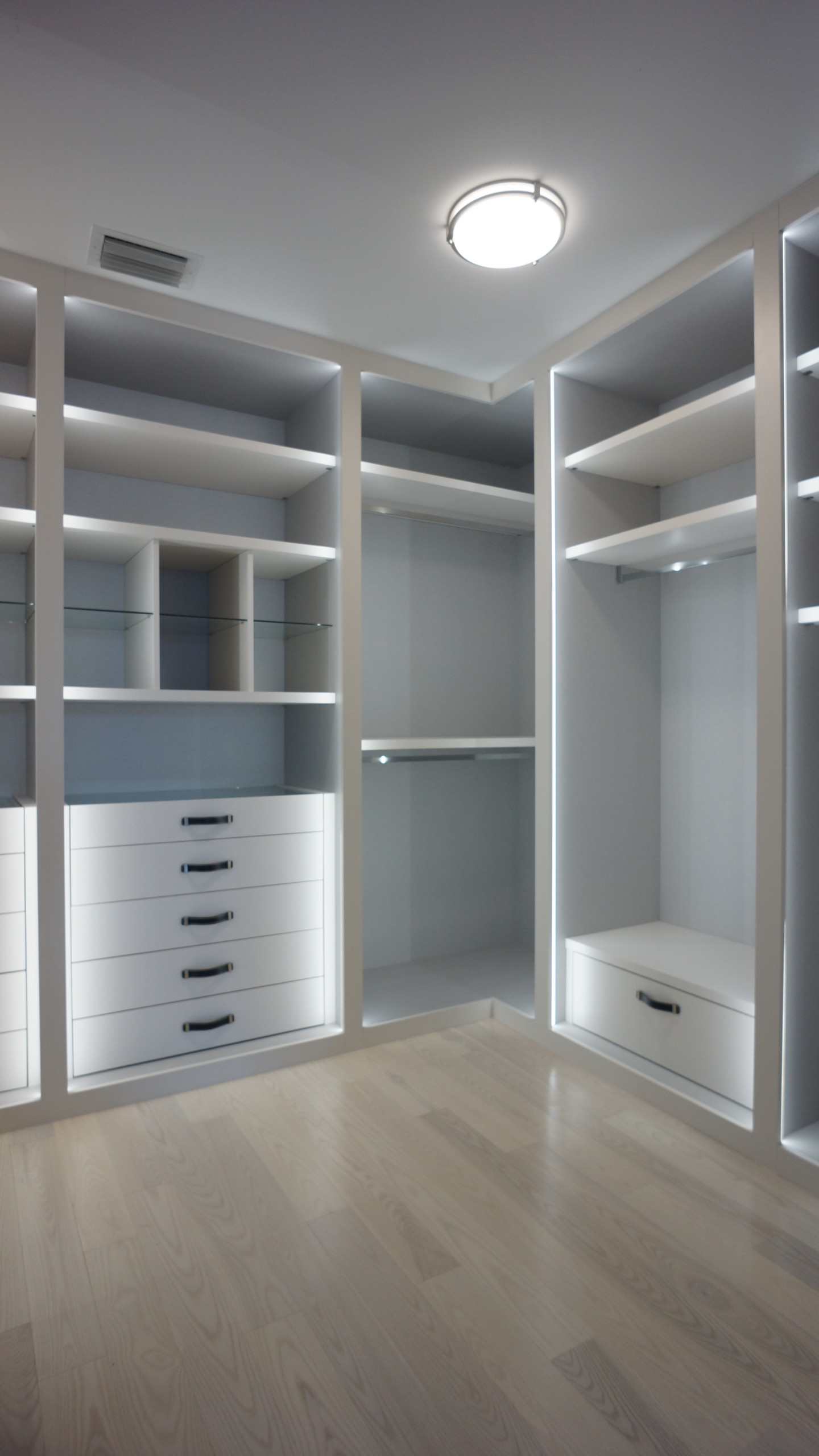 Image of: 75 Beautiful Modern Closet Pictures Ideas November 2020 Houzz