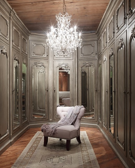 Elegant Reflections traditional-closet