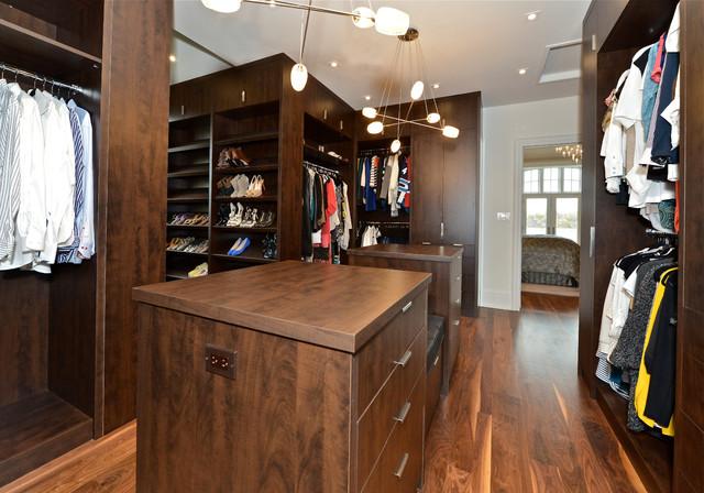 Ellen contemporary-closet