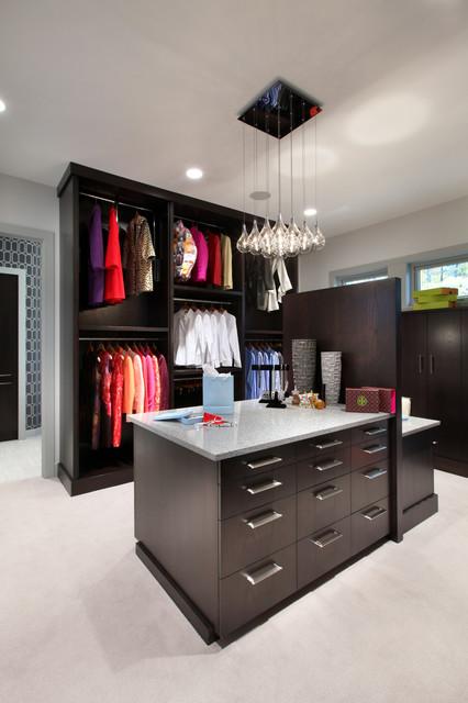 Hasserton contemporary-closet