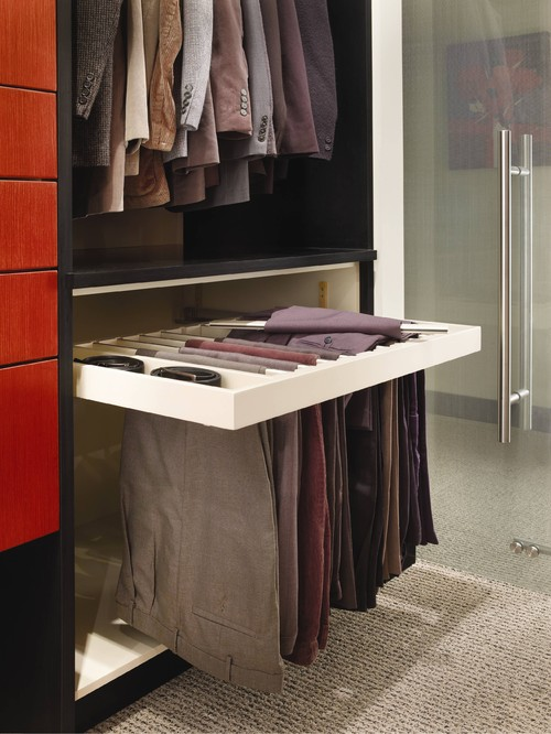 Modern Closet Cabinet Design walk-in-closet design ideas