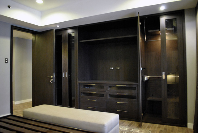 Modern Renovation modern closet