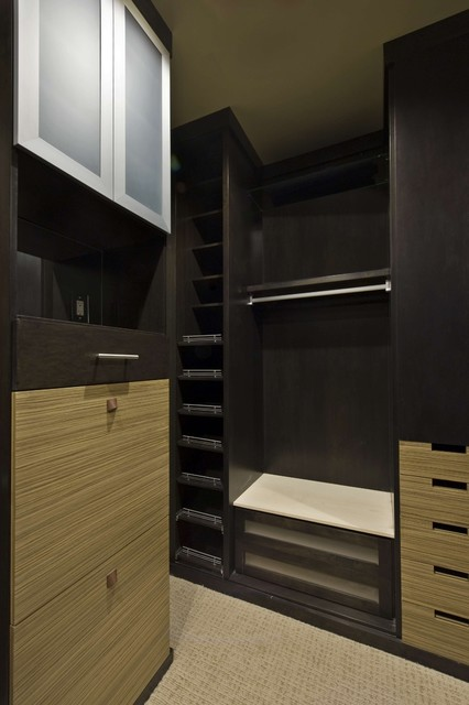 Modern, Sleek and Stylish modern closet
