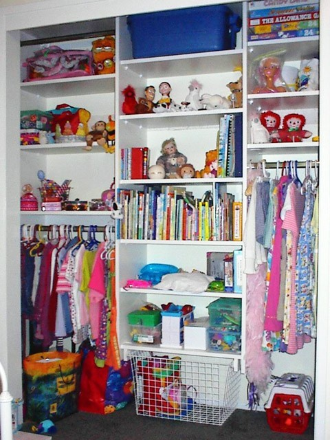 Organize To Go Children 39 S Reach In Closet Organizer In