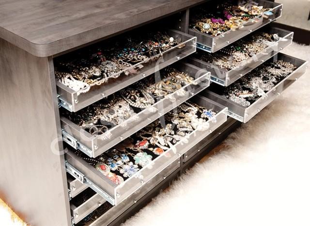 Stylist's Closet contemporary-closet