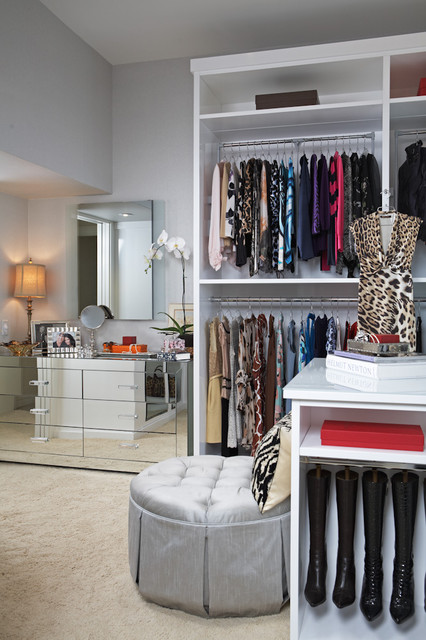 The Modern Glam Project transitional-closet