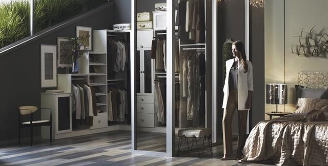 Walking Closet contemporary-closet