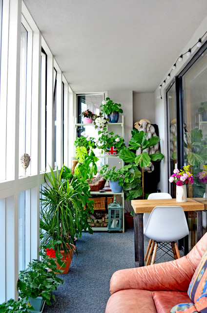 Eclectic Sunroom London East London Cat Life eclectic-sunroom