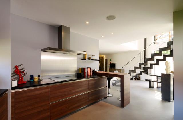 Maison contemporaine lyon 5 me contemporain cuisine - Humedades en las paredes ...