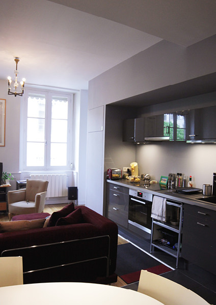 r novation d un appartement canut lyon other metro. Black Bedroom Furniture Sets. Home Design Ideas