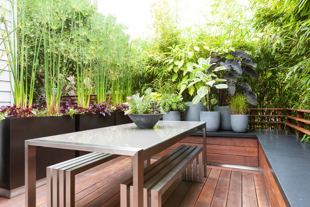 Example of a trendy backyard deck container garden design in Seattle