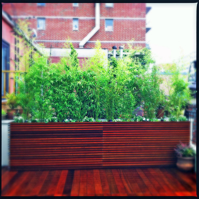 Chelsea nyc roof deck ipe planter boxes bamboo privacy for Privacy planters for decks
