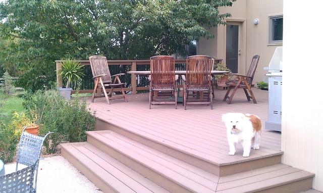 Dimarchi Residence - Boulder traditional-deck
